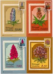 4225: Madeira - Maximumkarten