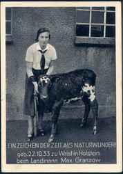 663700: Third Reich Propaganda, others,