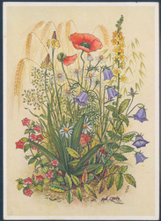 183510: Exhibitions/Events, Gardening/Agriculture, Garden Shows