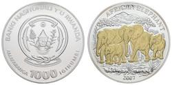 50.310: Africa - Rwanda