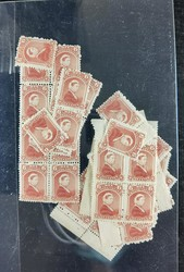 4545: Neufundland - Engros