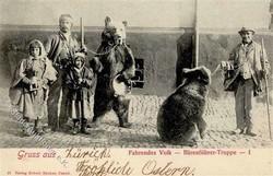 841010: Animals, Mammals, general