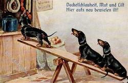 841020: Animals, Mammals, Dogs