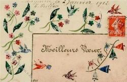 215000: Postgeschichte, Briefmarken, Briefmarke auf Ansichtskarten