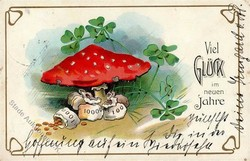 543510: Natur, Pilze, allgemein