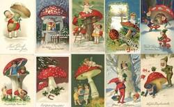 543510: Nature, Mushrooms, general