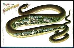 844015: Tiere, Reptilien, Schlangen