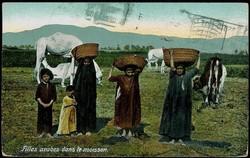 2045: Ceylon - Postkarten