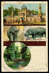 849010: Tiere, Zoologische Gaerten, allgemein