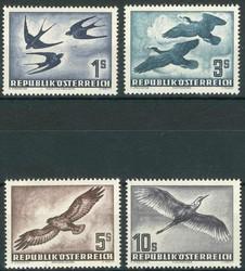 842010: Animals, Birds, general