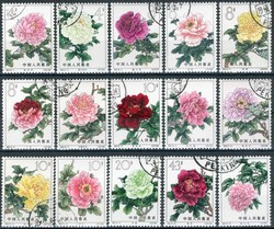541520: Natur, Blumen, Rosen