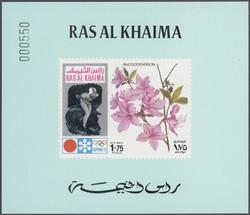 5345: Ras al Chaima - Sammlungen