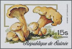 2940: Guinea - Engros