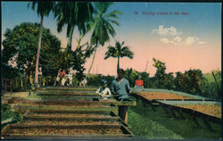 2320: Costa Rica - Postkarten
