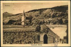 385515: Industrie und Wirtschaft, Landwirtschaft, Wein, Weinanbau