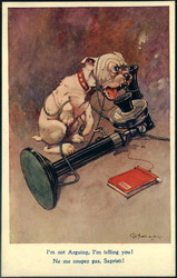 202014: Ansichtskarten, Glückwunsch, Hunde