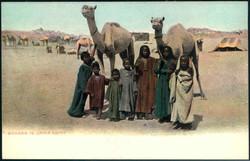 1560: Égypte (Royaume de)