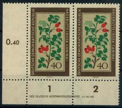 545010: Natur, medizinische Pflanzen, allgemein
