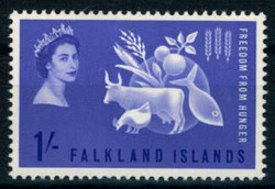2480: Falkland