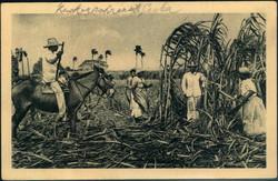 2330: Cuba Spanish Colony - Picture postcards