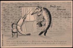 843510: Tiere, Meerestiere, allgemein