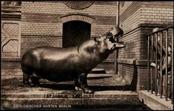 8490: Tiere, Zoologische Gaerten