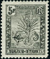4220: Madagaskar