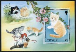 2935: Guernsey - Souvenir / miniature sheetlets