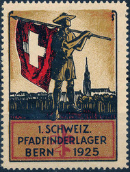 5655099: Schweiz Rayons diverse - Vignetten
