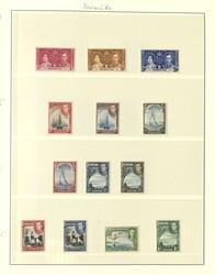 1880: Bermuda - Sammlungen