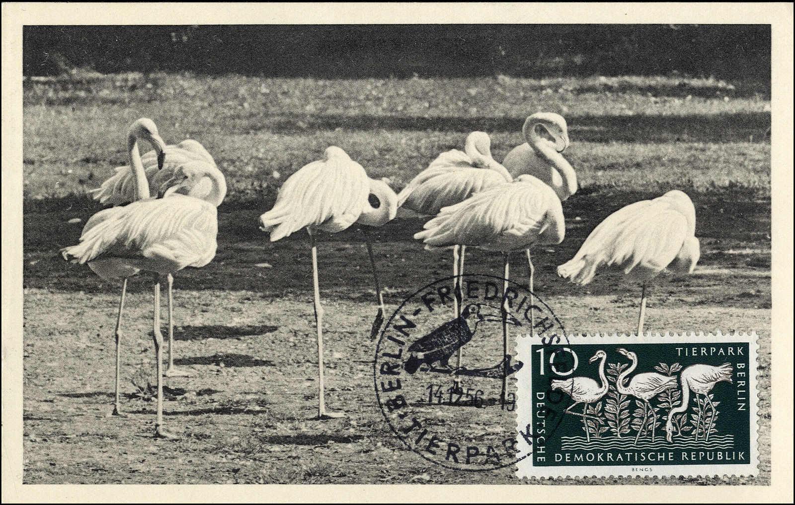 Lot 985 - deutschland ddr -  Rolli Auctions Auction #68 Day 1