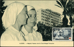 3030: Int.Organisationen, Rotes Kreuz