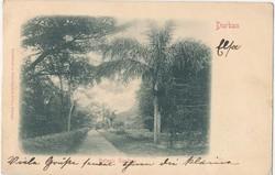 6085: Südafrika - Postkarten