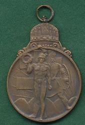 6535: Ungarn - Medaillen