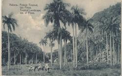 2335: Cuba - Postkarten