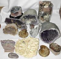 850.18: Varia – Fossils