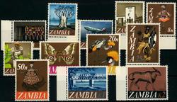 5575: Zambie