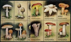 6185: Tanzanie