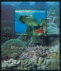 3755: Jemen Republik
